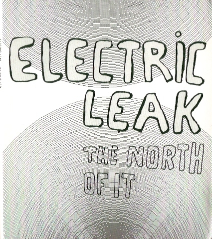 electricleak