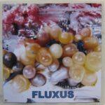fluxus299